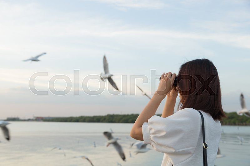 Woman watching bird watching by the sea during the evening at sunset, stock photo