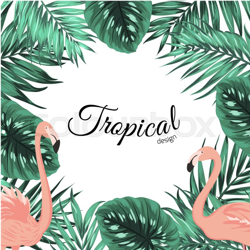 Tropical Design Border Frame Template With Turquoise Green