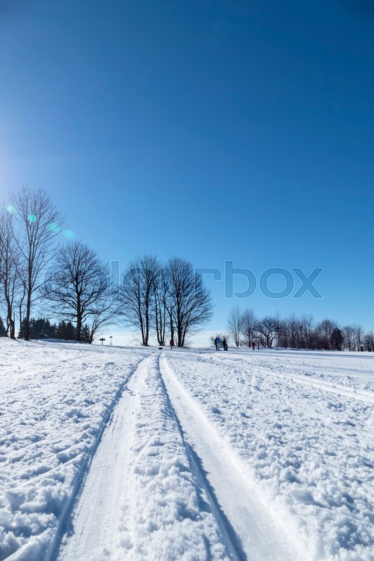 Winter sports cross-country skiing, icon sports, winter holidays, nature, stock photo