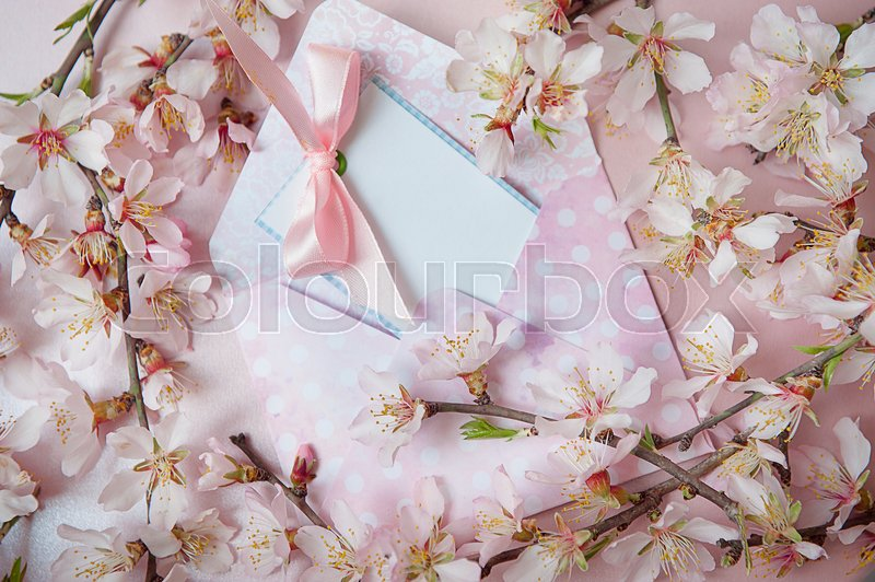 Inscription card with a pink bow on the envelope on a pink background with branches of flowering trees, stock photo