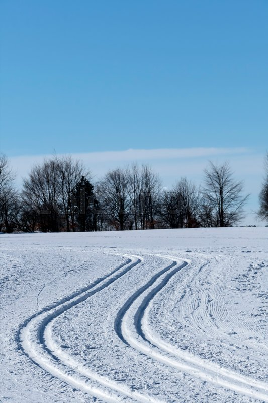 Winter sports cross-country skiing, a symbol of cross-country skiing, winter sports, nature, stock photo