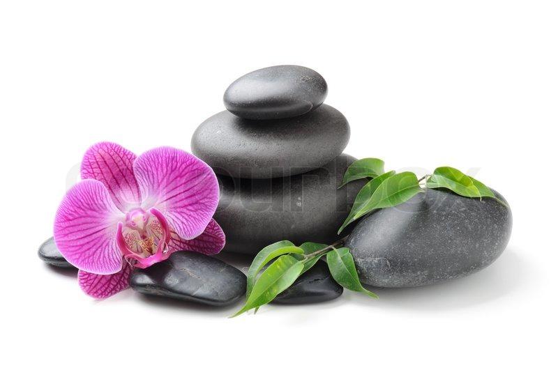 spa konzept mit zen steine und orchidee stock foto. Black Bedroom Furniture Sets. Home Design Ideas