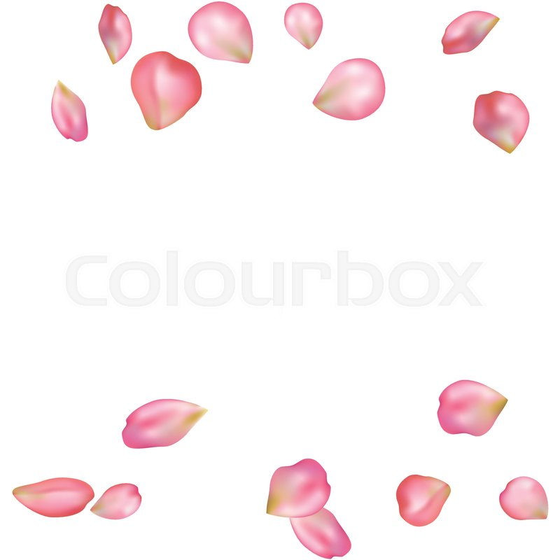 spring flower petals blossoms blank background template vector