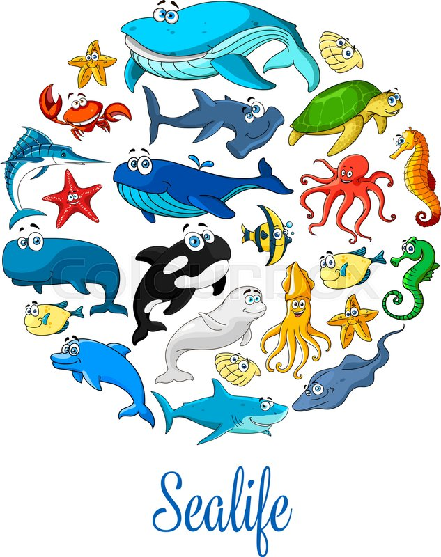 Sealife poster of sea dolphin, whale and shark, seal, starfish and ...