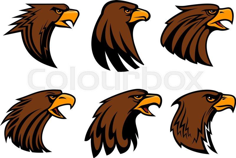 Eagle Or Hawk Vector Mascot For Sport Team Badge Symbol Of