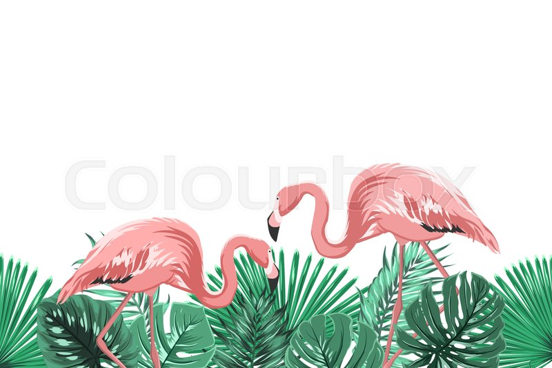 Tropical Greenery Rain Forest Leaves Stock Vector