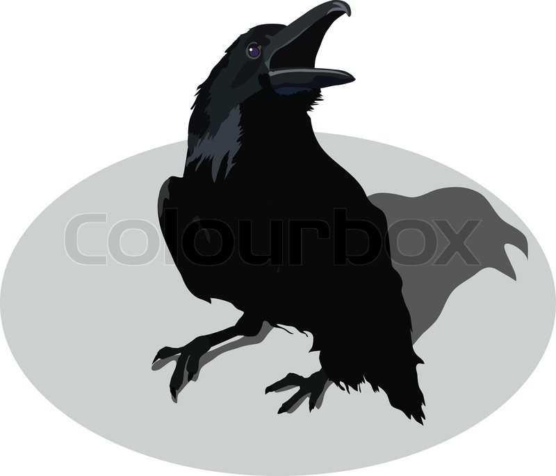 Line Drawing Raven : Preview raven croaks stock vector colourbox