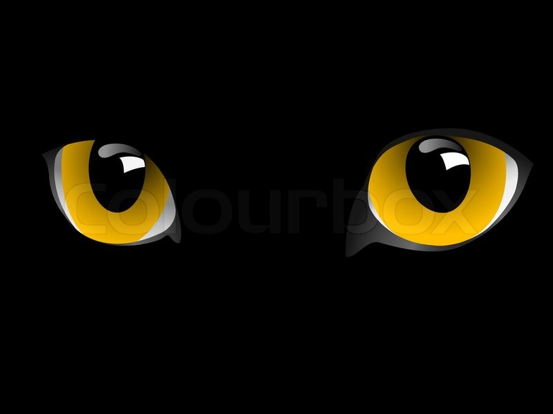 eyes of cat are in darkness vector stock vector