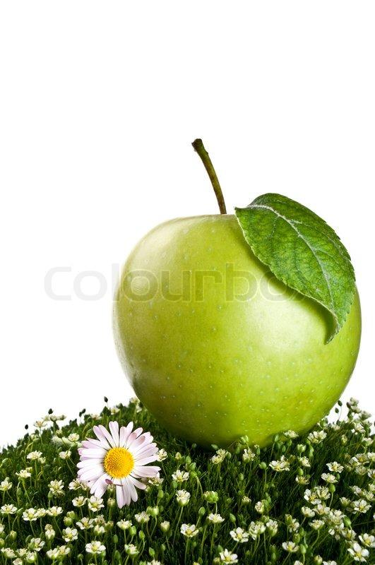 apple fruit background grass - photo #27