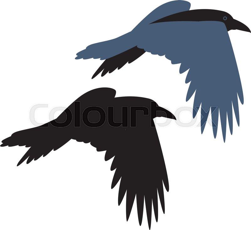 Krähe, silhouette, schattenriss | Vektorgrafik | Colourbox