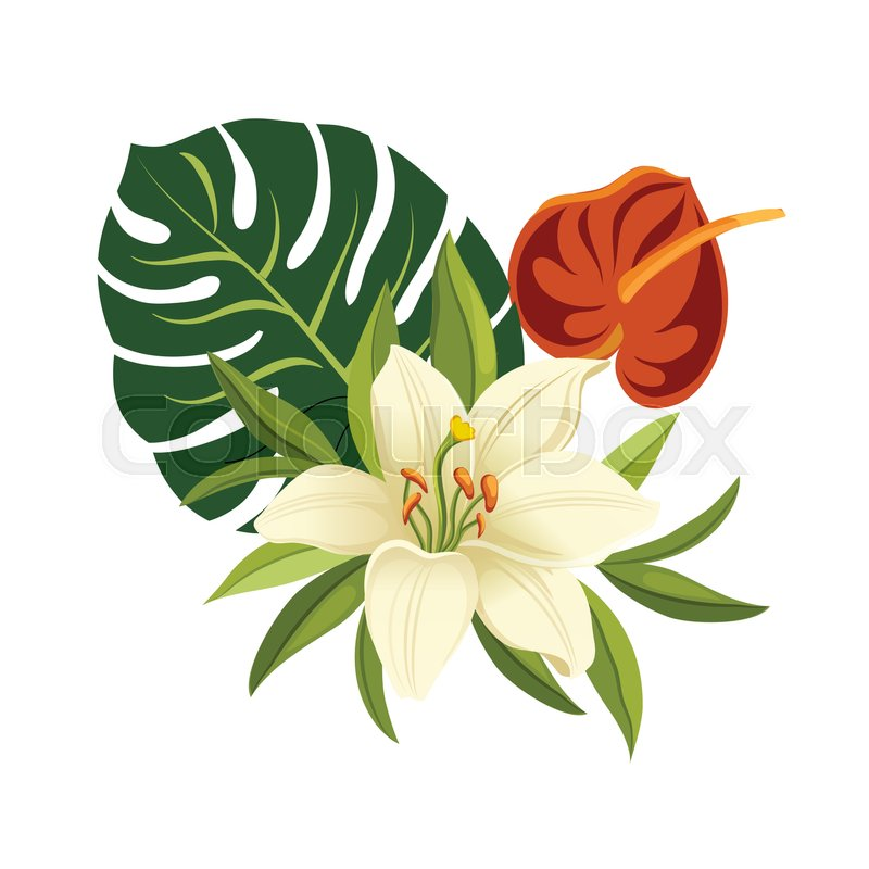 tropical flowers and leaves elegant floral vector composition rh colourbox com tropical flower vector free download tropical flower vector free download