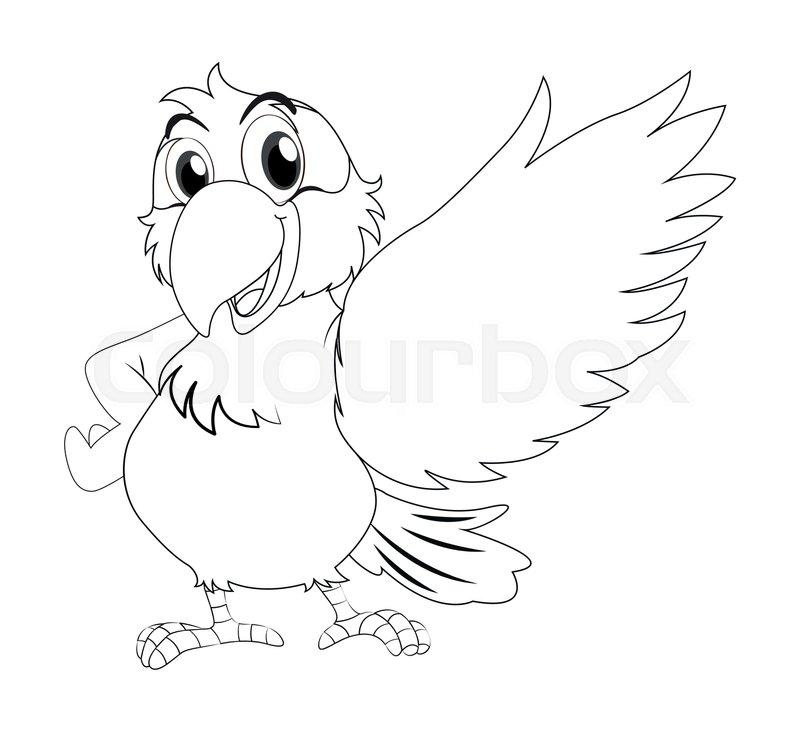 animal outline for parrot illustration vector