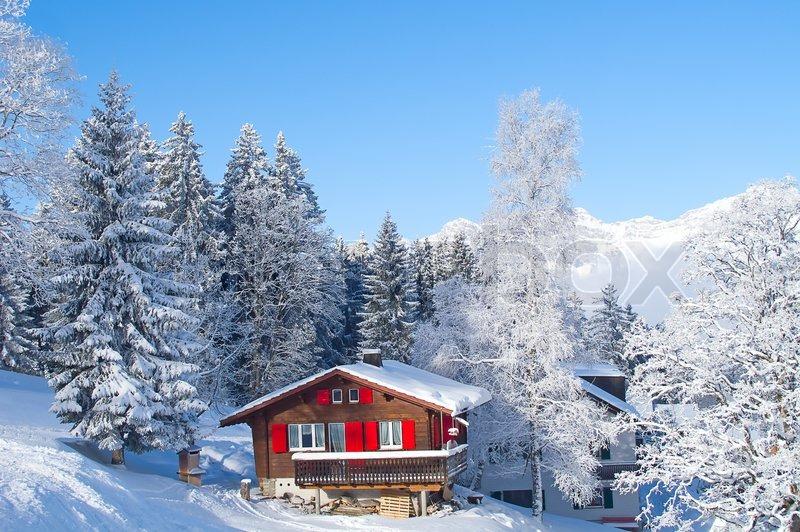 Alpine Christmas Tree