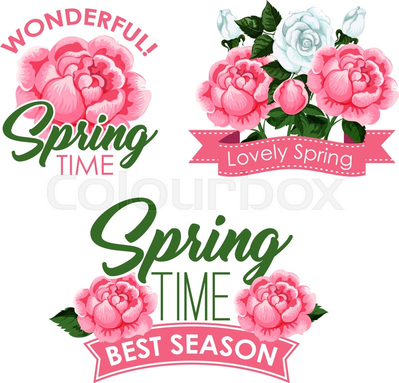 Springtime season greeting quotes with roses bouquets and flowers ...