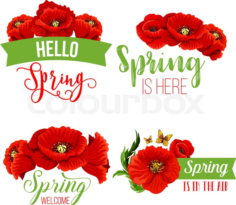 Springtime quotes and poppy flowers design with green ribbons ...