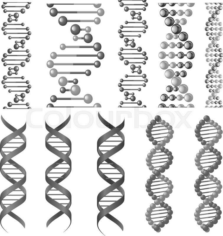 Dna Or Rna Helix Vector Isolated Icons Symbols Of Chromosome Cell