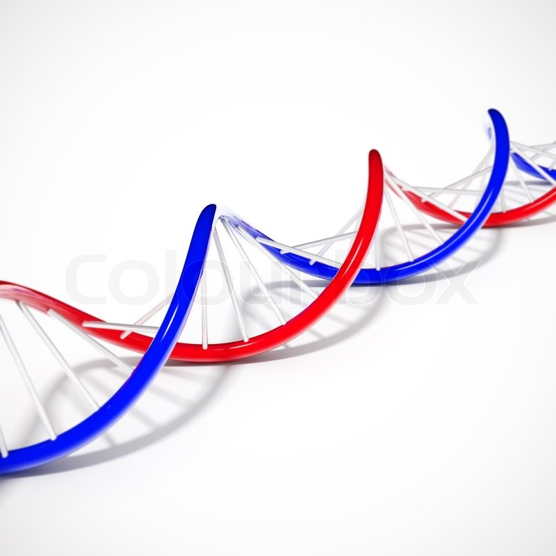 Dna Model Wallpaper: Double Helix DNA String Lying On A White Background
