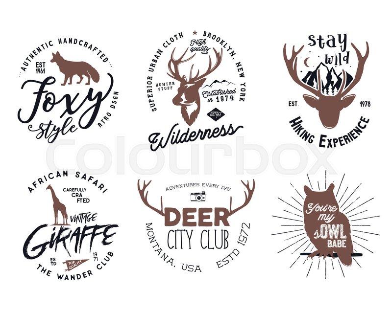 stock vector of wild animal badges set included giraffe owl fox and
