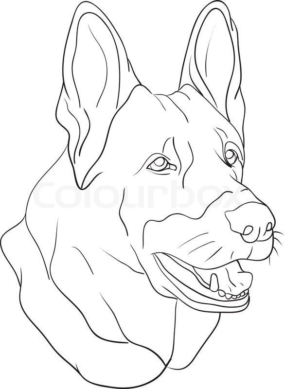 Vektor Hund Den Kopf Auf Hintergrund Vektorgrafik