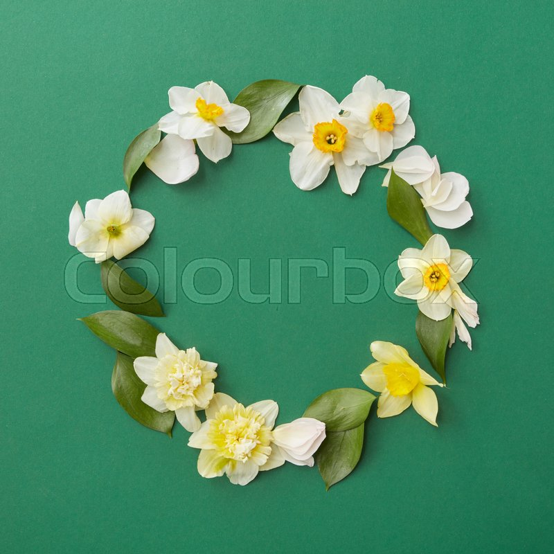 Top view of floral frame made of white flowers in form of circle top view of floral frame made of white flowers in form of circle over green background blank space in middle may be used for your ideas emotions etc mightylinksfo