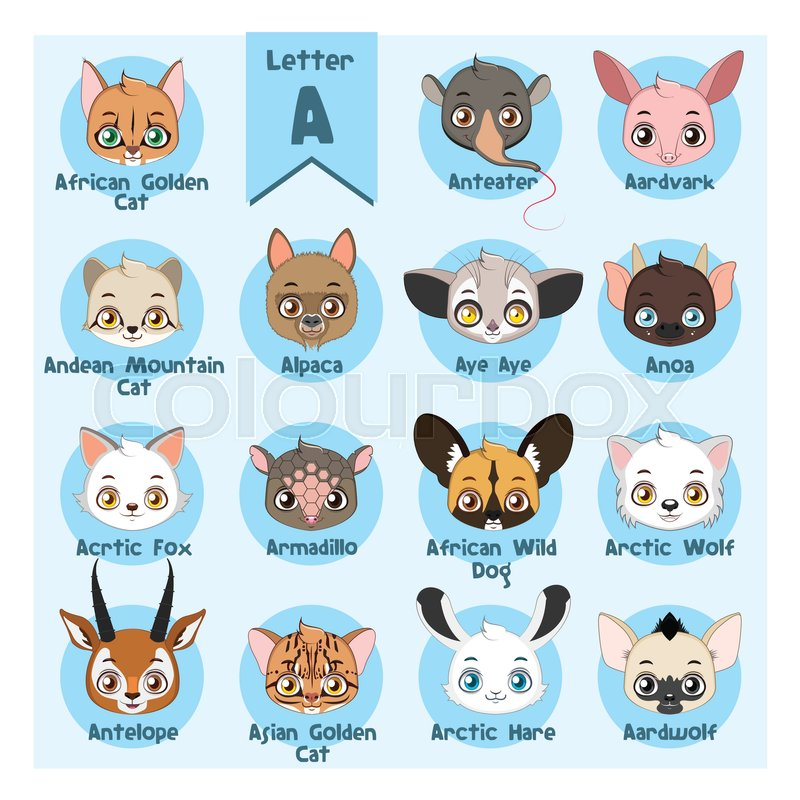 Animal portrait alphabet   Letter A   Stock vector   Colourbox