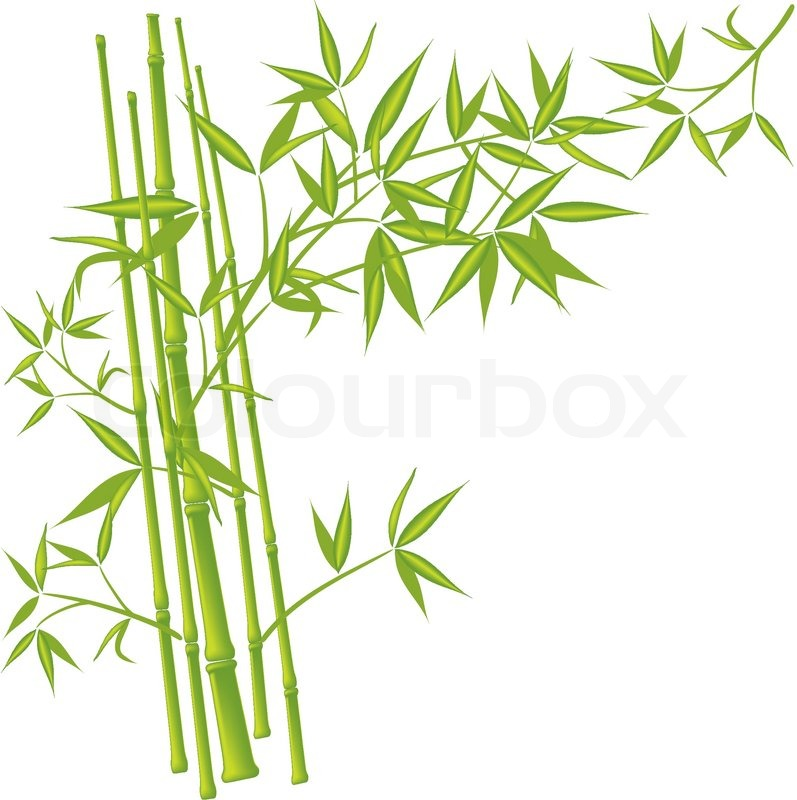 bamboo vector illustration stock vector colourbox rh colourbox com bamboo vector illustration bamboo vector download