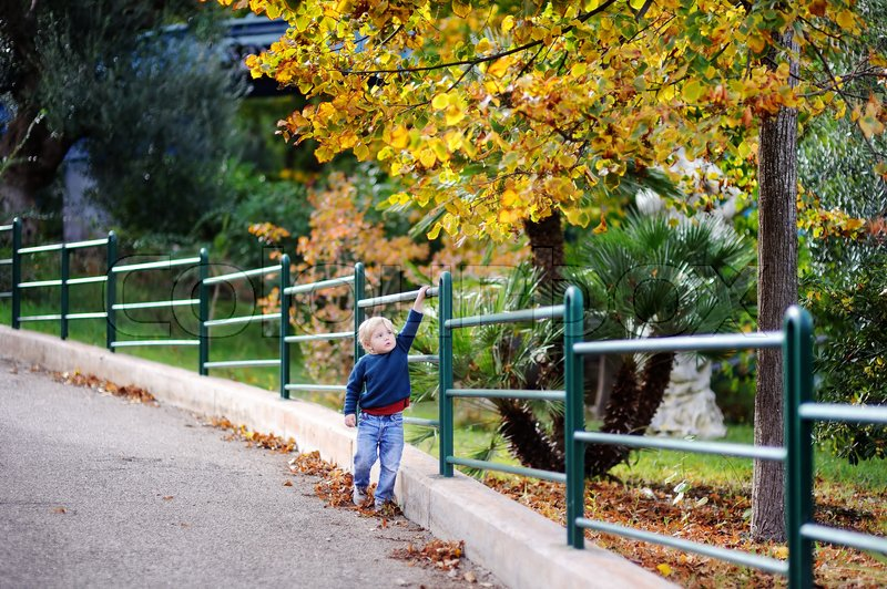 482ff40d7 Cute little boy walking in park on nice ...