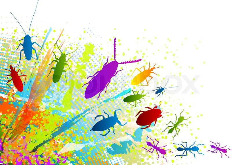 insect on the rainbow background