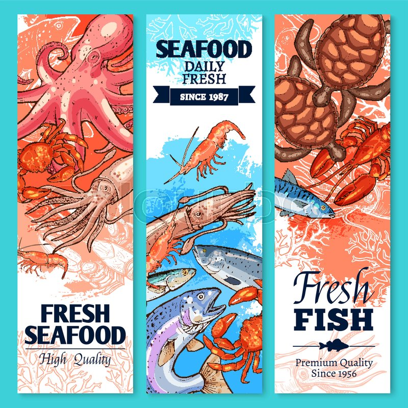 Fish and seafood sketch banner set. Fresh crab, salmon, shrimp, lobster, tuna, octopus, mackerel ...