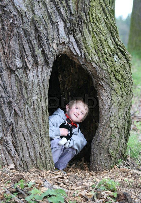 Child In A Tree Cavity Stock Photo Colourbox