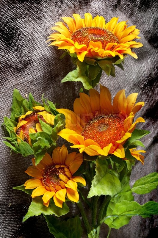 Bright Still Life With Sunflowers