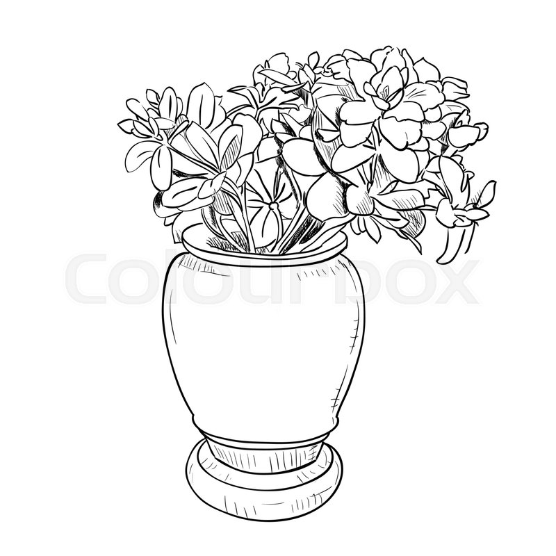 Vector Drawing Sketch Of Vase With Flowers Hand Draw Illustration