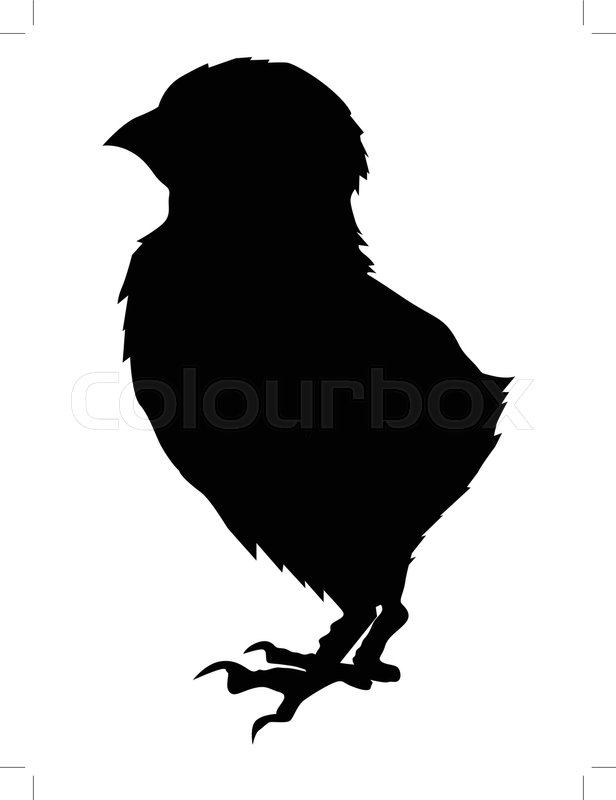 silhouette of baby chick vector