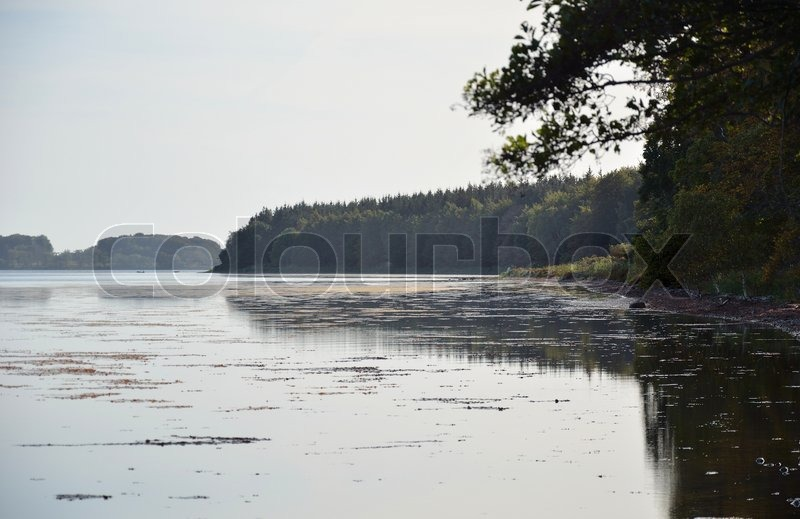Stock image of 'Beech mirror its peak in the blue waves'
