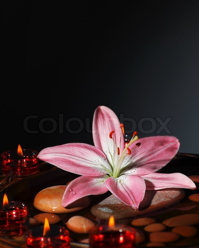 New Leaf Salon >> Zen atmosphere at spa salon, warm candles light at dark ...