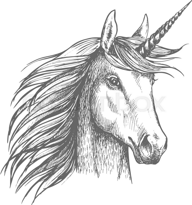 Unicorn horse animal vector sketch white mythical heraldic isolated unicorn horse animal vector sketch white mythical heraldic isolated horse head with long horn mythic symbol of fantasy horse for fairytale story or voltagebd Gallery