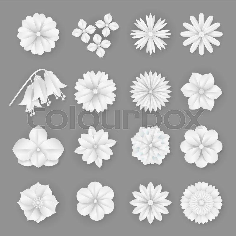 Vector Paper Flowers Set Illustration Stock Vector Colourbox