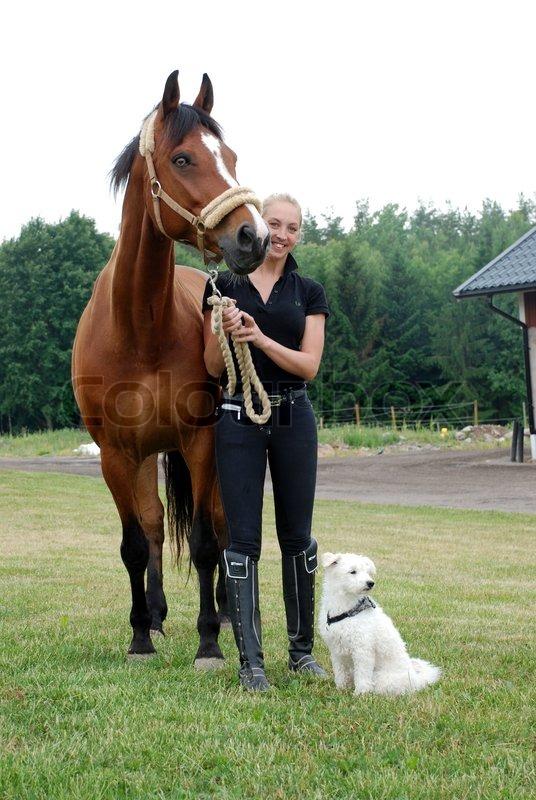 frau wird von pferd gefickt