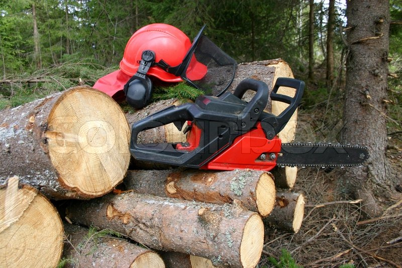 Tractor Man On Cutting Trees : Chainsaw and logger equipment with cut trees stock photo