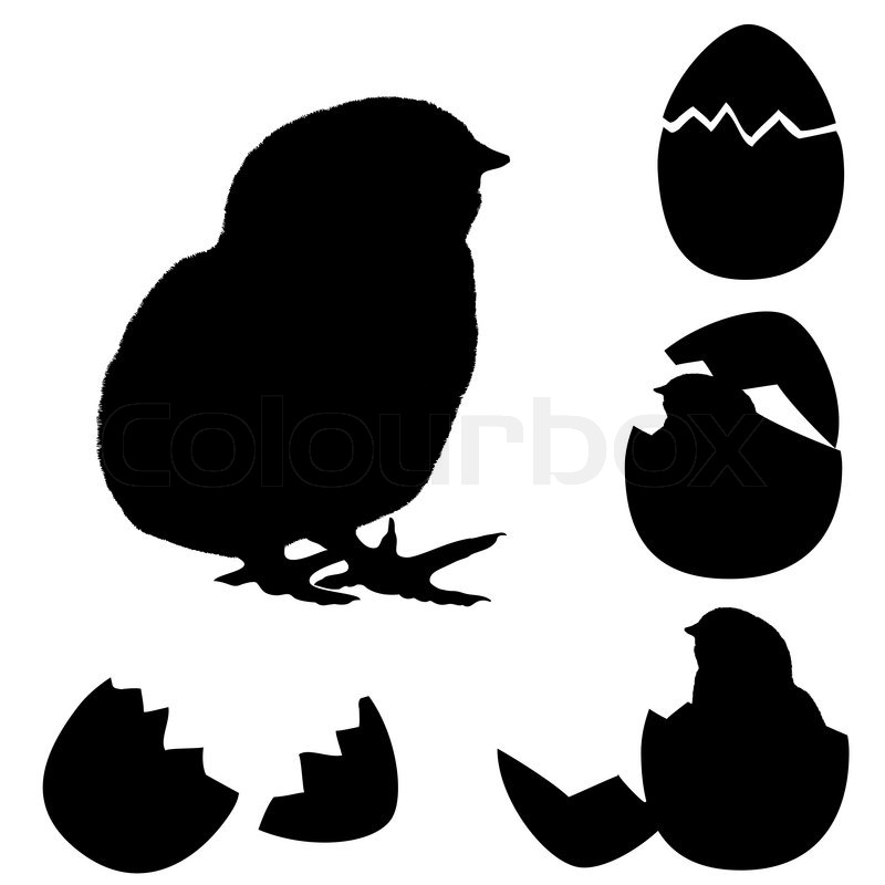 Vector Illustration Of A Chicken Silhouette Newborn Chick