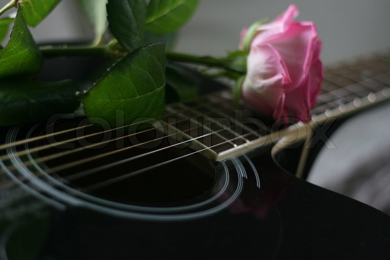 Tune Up Prices >> Love on the Guitar | Stock Photo | Colourbox