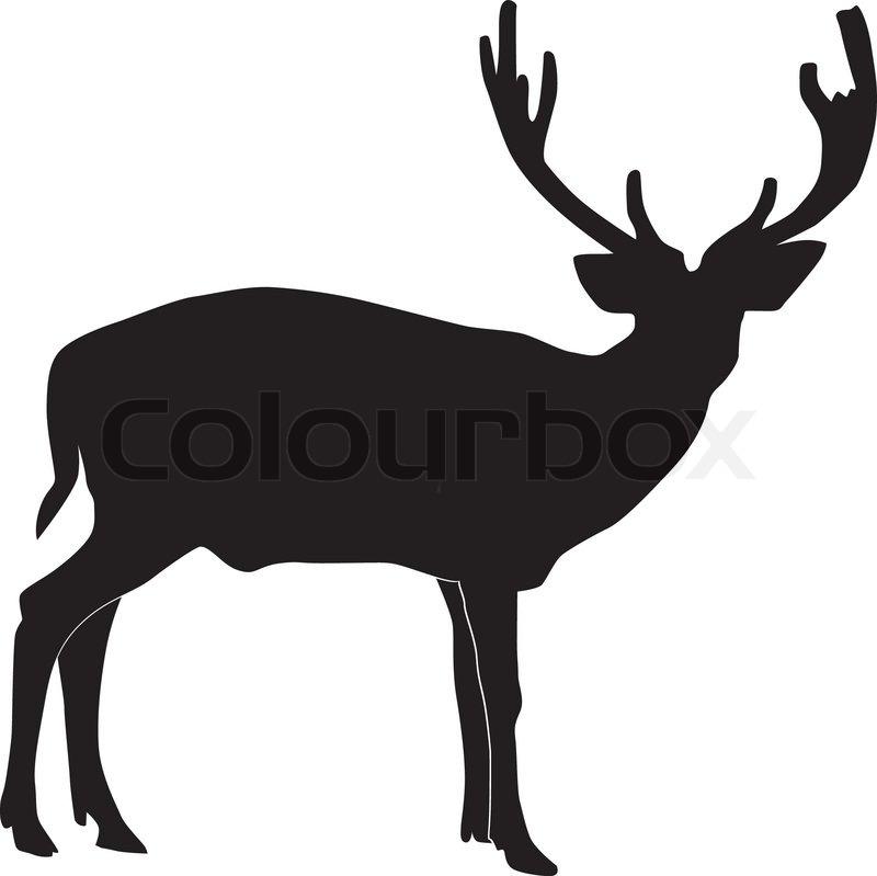 image regarding Printable Deer Targets identified as Vector case in point of deer Inventory vector Colourbox