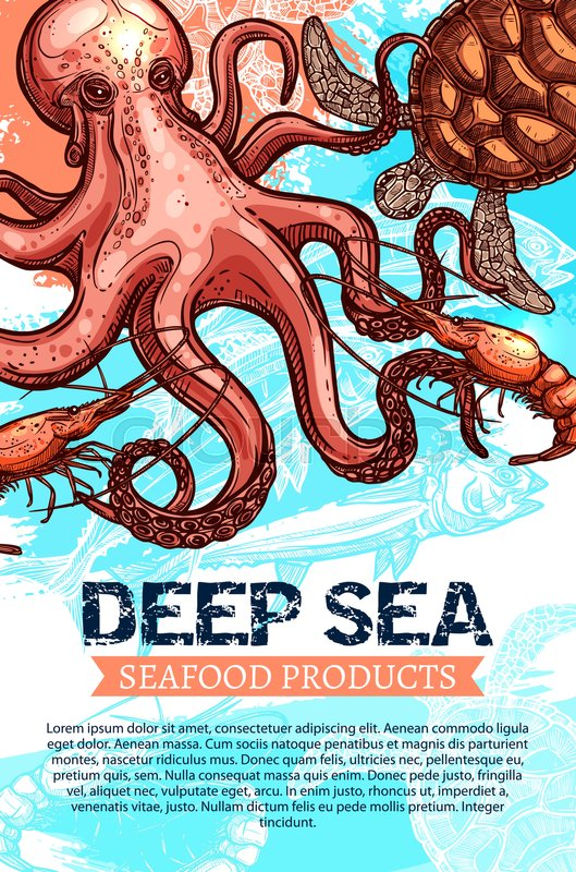 Seafood Product And Deep Sea Fishing Banner Ocean Fish Shrimp Octopus Turtle Sketches With Ribbon Text Layout Below For Market