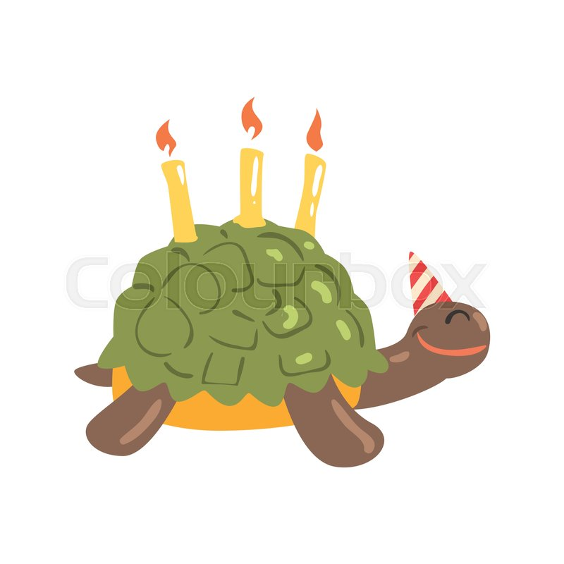 Cute Cartoon Tortoise Happy Birthday Colorful Vector Illustration