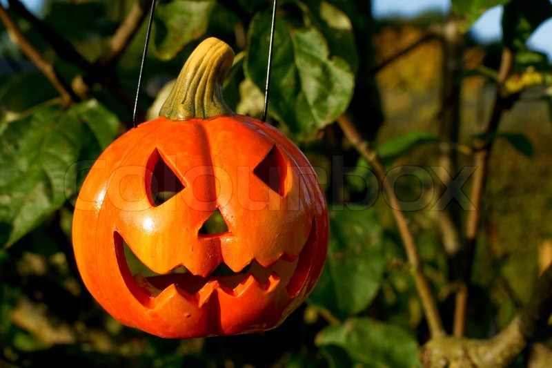 how to get pumpkin head