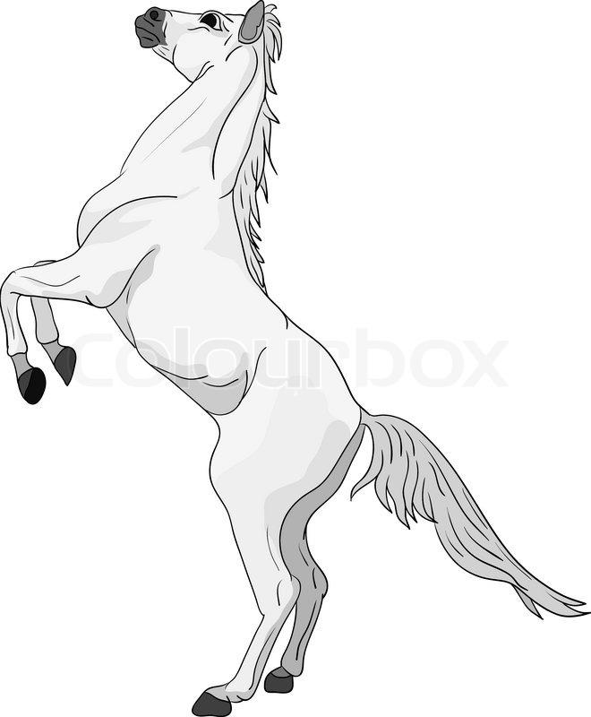 Paard Kleurplaat Spring Vektor Pferd Stehend Auf Hinterbeinen Vektorgrafik