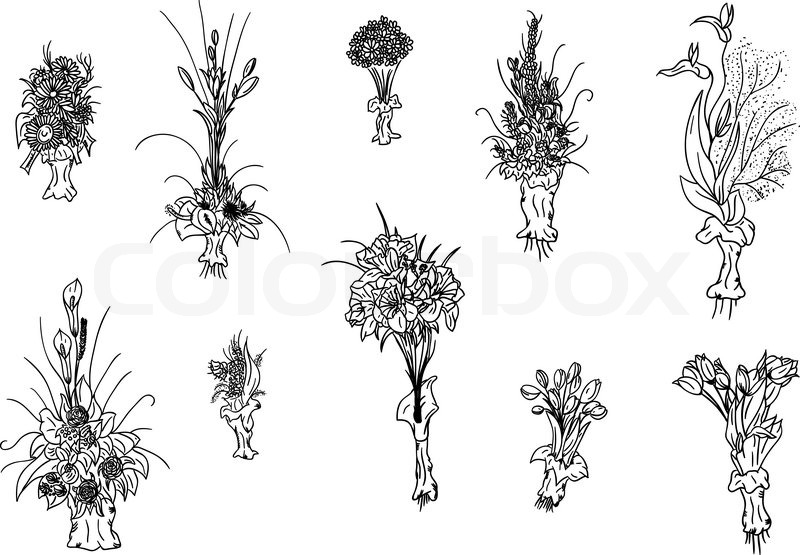 hand draw set of flowers bouquet | Stock Vector | Colourbox