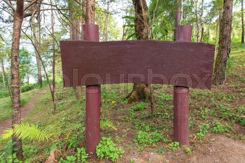 Wood sign or billboard for advertisement in a forest, stock photo