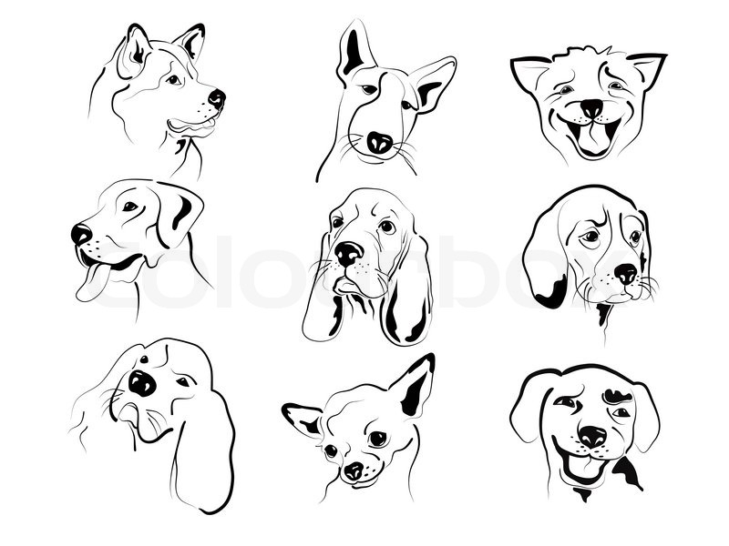 set of different dog�s friendly graphic faces sketches