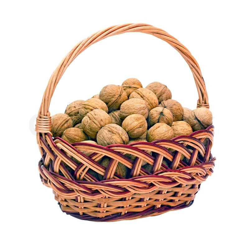 Корзинка с орешками картинки для детей